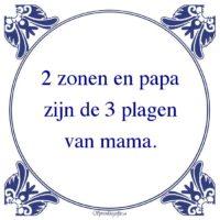 Algemeen-2 zonen en papazijn de 3 plagenvan mama.