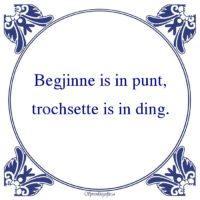 Friestalig-Begjinne is in punt
