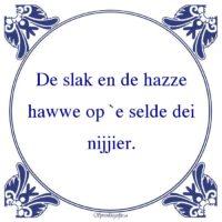 Friestalig-De slak en de hazzehawwe op `e selde deinijjier.