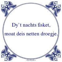 Friestalig-Dy`t nachts fisket