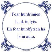 Friestalig-Foar hurdrinnenha ik in fyts.En foar hurdfytsen haik in auto.