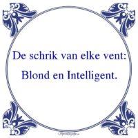 Vrouw vs Man-De schrik van elke vent:Blond en Intelligent.