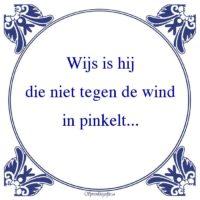 W.C.-Wijs is hijdie niet tegen de windin pinkelt...