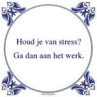 Werk-Houd je van stress?Ga dan aan het werk.