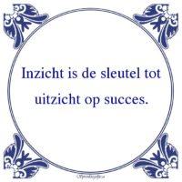 Werk-Inzicht is de sleutel totuitzicht op succes.